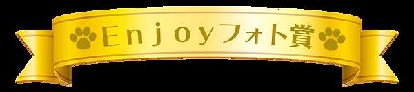 Enjoyフォト賞2.png