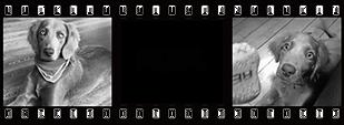 仕上がりイメージ001s.png