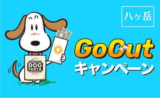【八ヶ岳】Go Outキャンペーン