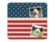 【商品】アメリカ両面6402.jpg