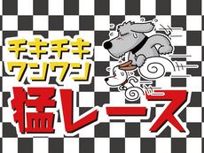 チキチキワンワン猛レース(TM)