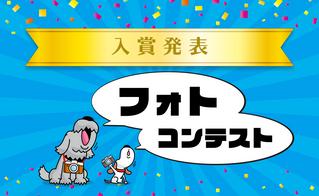 入賞作品発表!