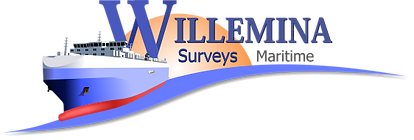 logo-willenina-surveys.png
