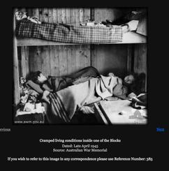 Berthe Berkowitz bottom bunk facing camera