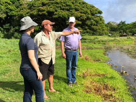 GRM Begins Initial Tropical Ag Project on Kauai