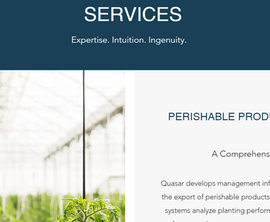 Professional Services Business website