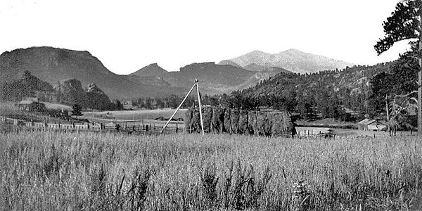 ranchOrg01.jpg