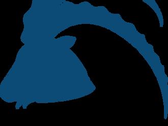 Sachspenden von Alvivo