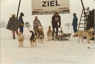 Katja sled dog race.jpg