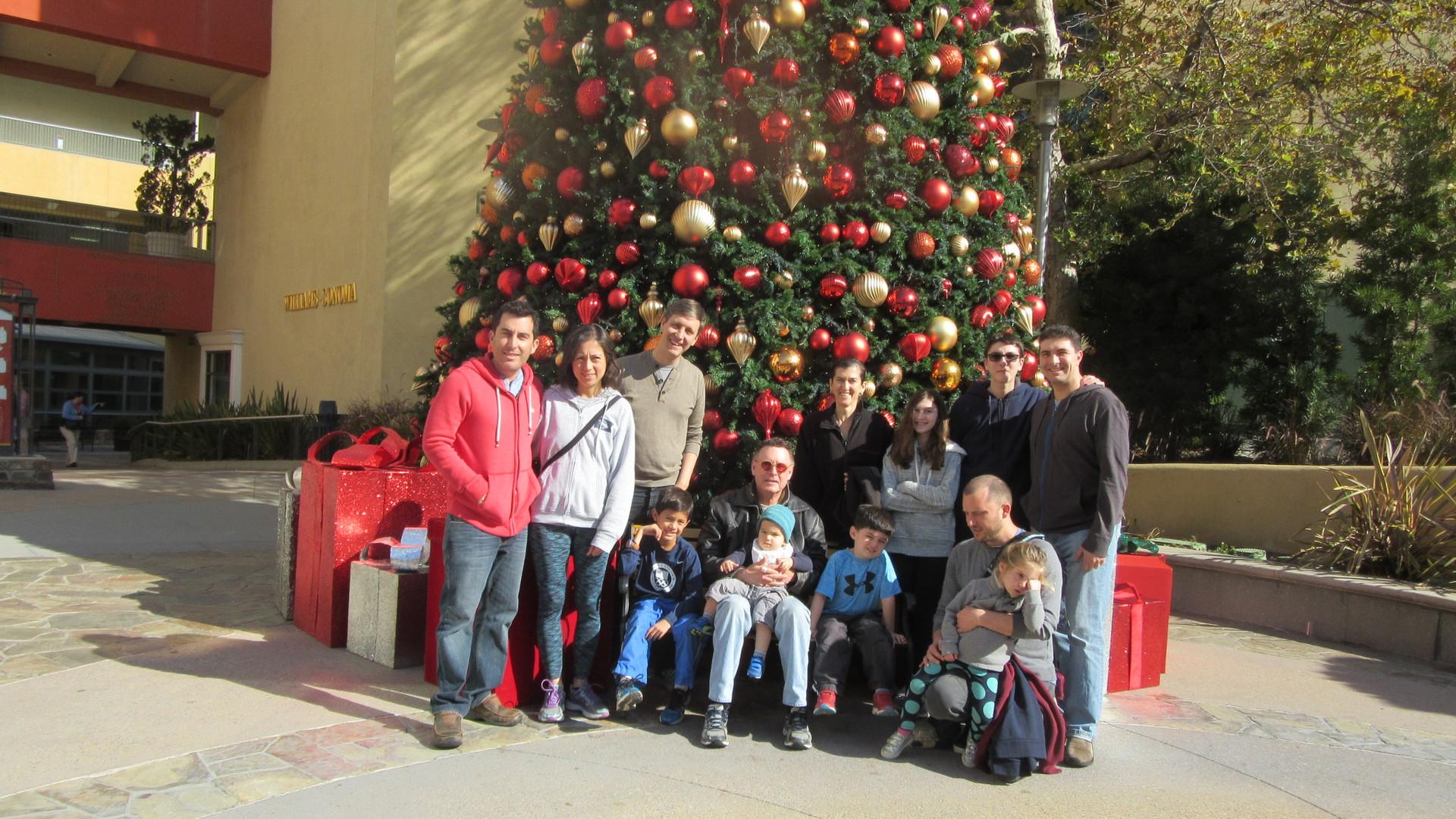 IMG_2362 Sandy Xmas tree 1  copy (1).jpg