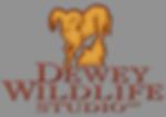Dewey Wildlife studio taxidermy