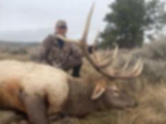 Elk- Dallas 19.jpeg