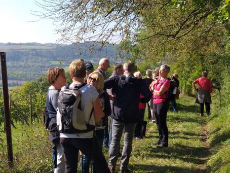 Taubertäler Wandertage: TV-Angebot zieht über 40 Teilnehmer/innen