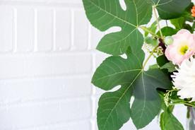 Fig, lisanthus, dahlia, pokeweed
