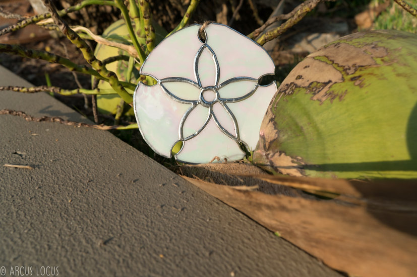 Stained Glass Sand Dollar Suncatcher, Sea Biscuit, Sanddollar, Sandollar
