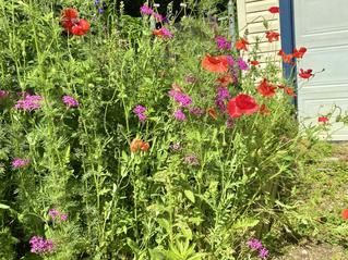 Gardening + Grounding