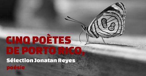 Puerto-Rico_bannière-4.jpg