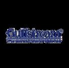 GULFSTREAM2.png