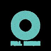 FN logo_transparent bg_.png