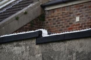 Strip on roof.jpg