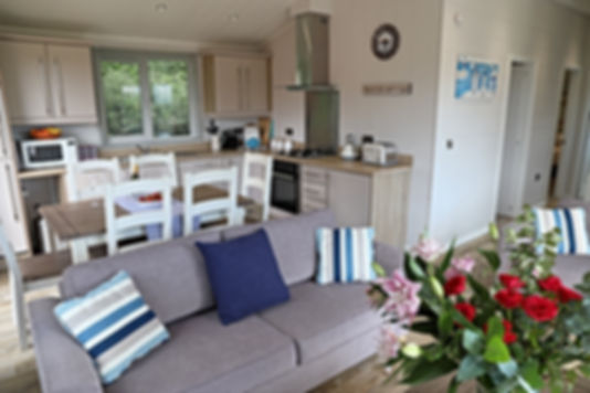 No 16 Foxglove living kitchen.jpg
