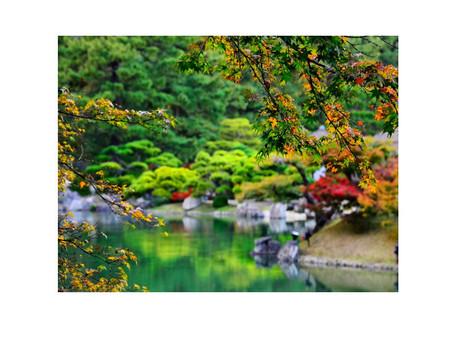2017-04-01 水戸市民緑化祭り 千波湖