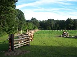 snake rail fence - field