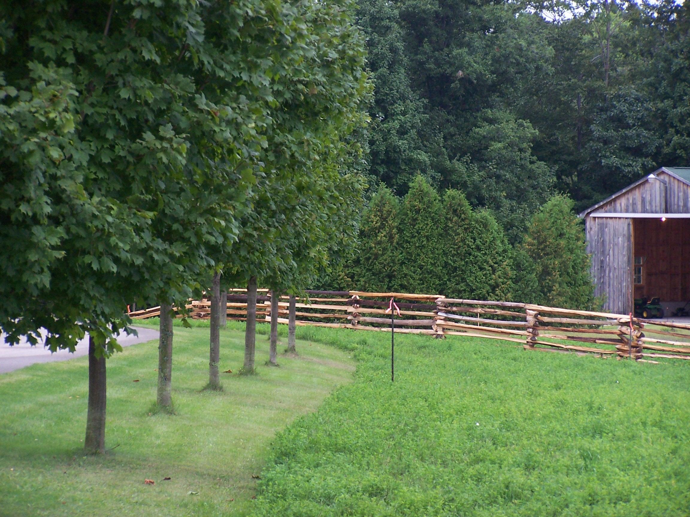 snake rail fence - angle