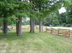 straight rail fence - yard boundary