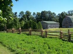 snake rail fence - outside