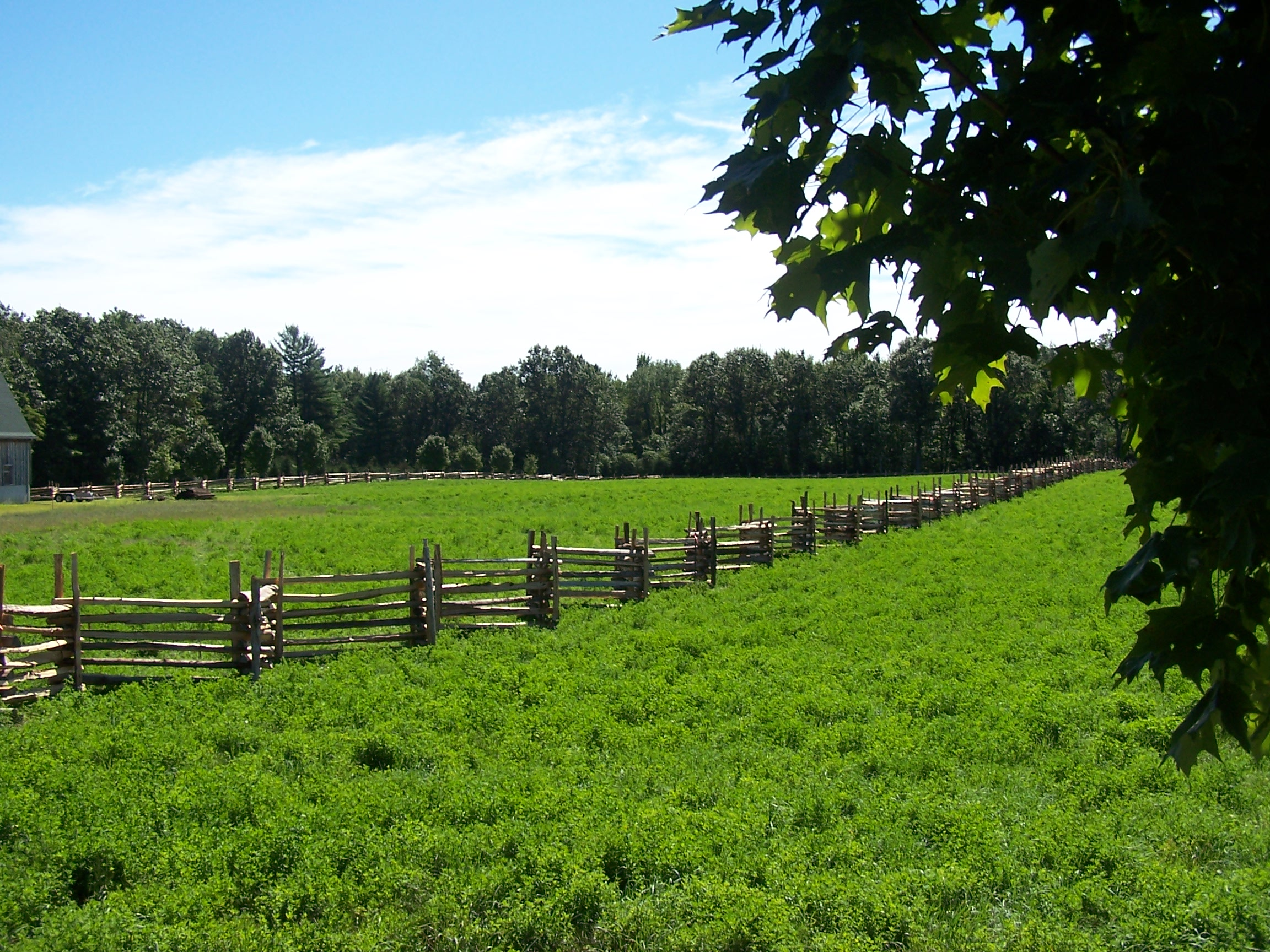 snake rail fence - farm