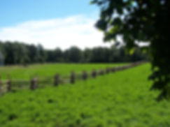 snake rail fence around farm property