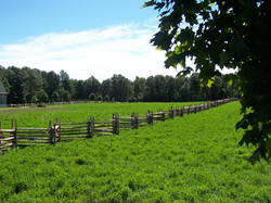 snake rail fence - farm