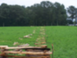 Layout for cedar split rail fence in snake design