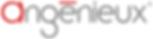 Angénieux_logo_2010.png