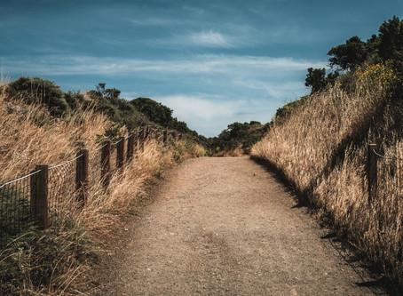 Explorons ensemble ces chemins encore mal desservis :