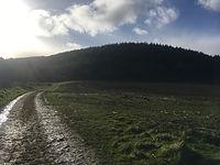 Mountan Biking Shropshire