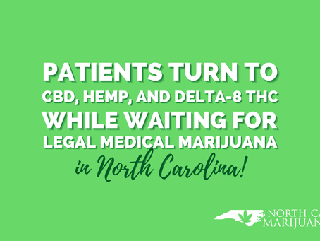 North Carolina Patients Turn to CBD, Hemp, and Delta-8 THC While Waiting for Legal Medical Marijuana