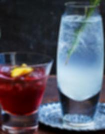 Gin_Template.jpg