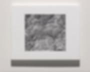Screen Shot 2020-03-23 at 1.48.09 PM.png