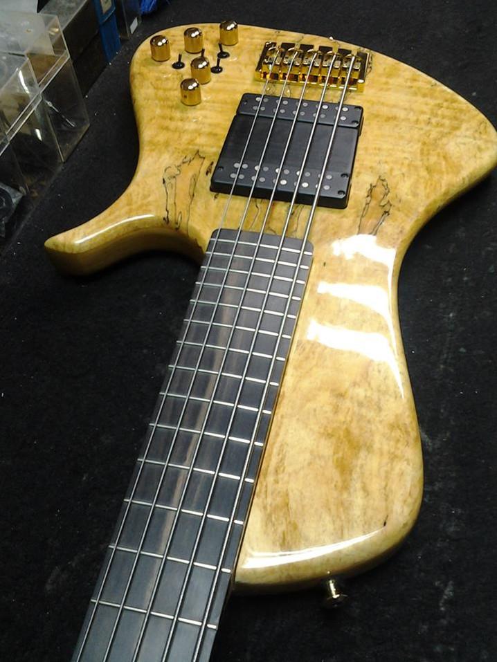 Prestige 5 strings bolt on.jpg