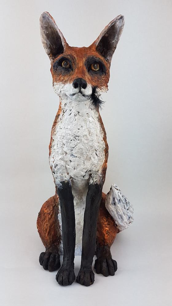 Magnificent Mr Fox