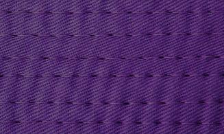 purplebelt_edited.jpg