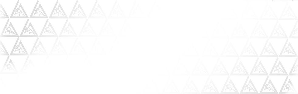 GU-triangle-pattern2.jpg