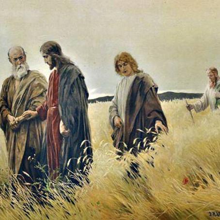 Missa do V Domingo depois da Epifania