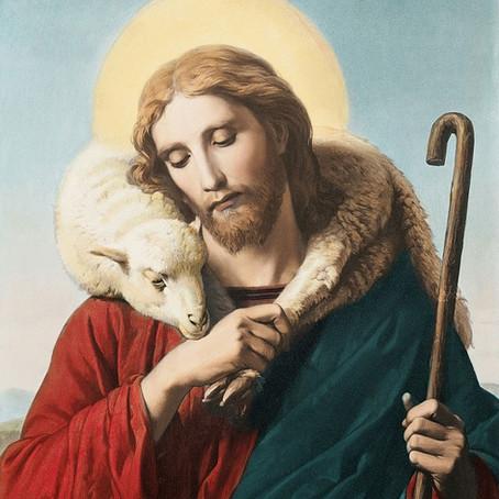 O Domingo do Bom Pastor - II Domingo depois da Páscoa