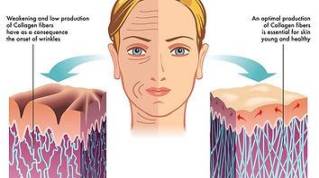 Collagen-for-Skin.jpg