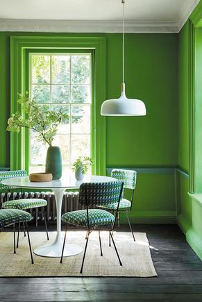 דירה בצבע ירוק.jpg