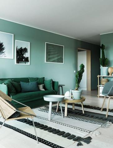סלון קירות בצבע ירוק.jpg