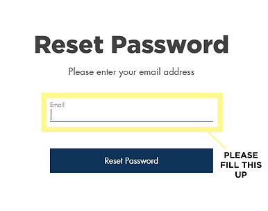 Reset Password 4.jpg